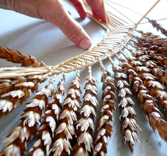 harpe-tressage-ble-en-cours-or-cadre