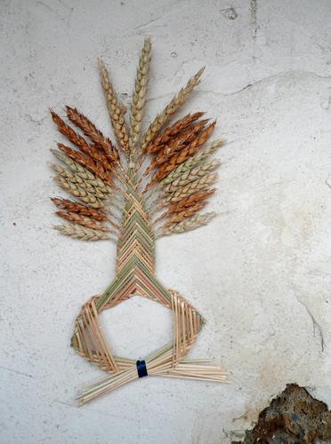 arbre-de-vie-ble-tressage-or-cadre-france