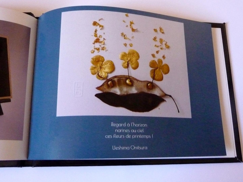 livre-flore-atelier-or-cadre-dorure-vegetale-haikus