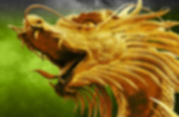 Dragon Buchen.jpg