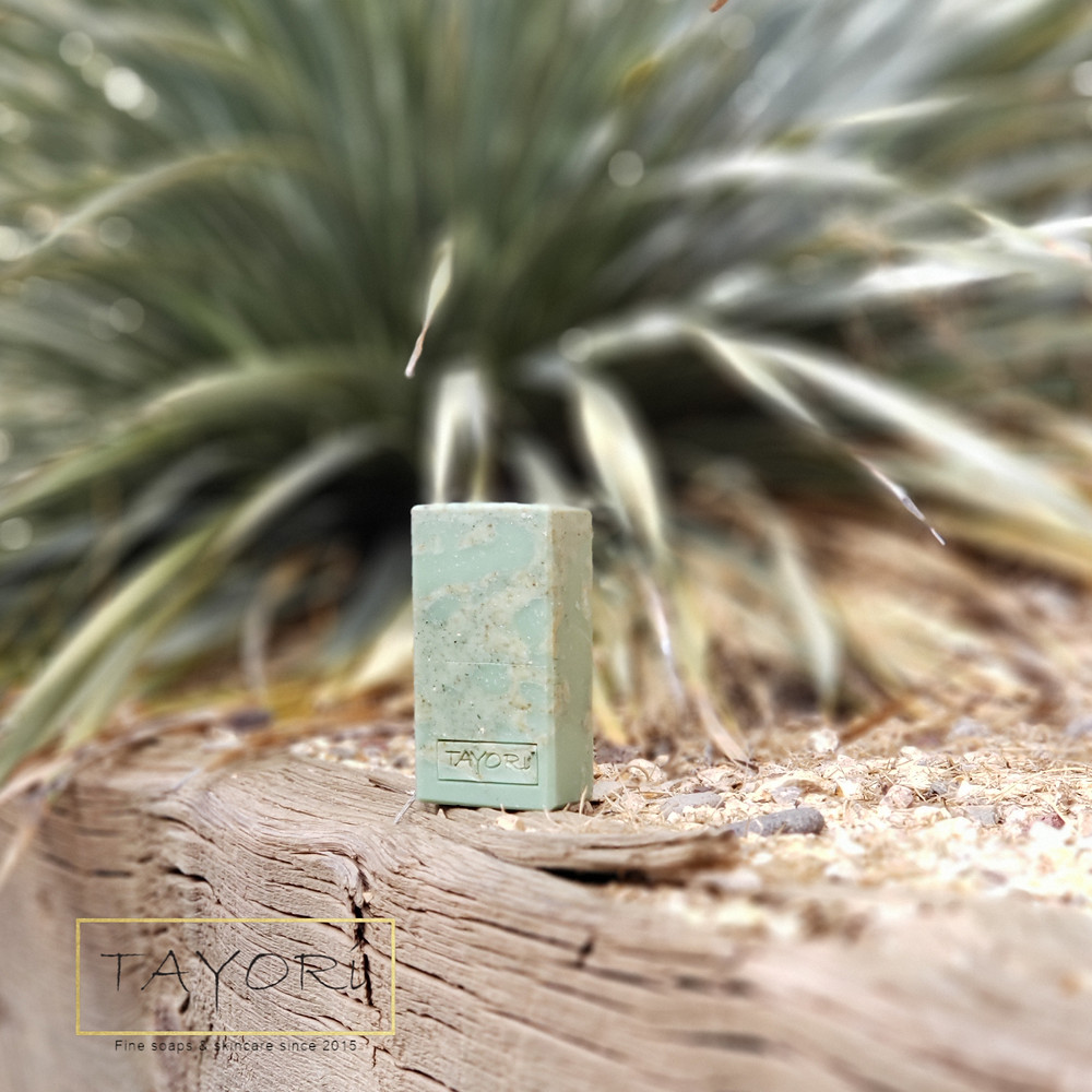 Green Spaces Bar Soap in our xeriscape garden in front of giant Yucca plant