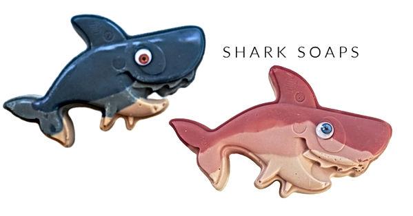 IG Landscape Sharks.jpg