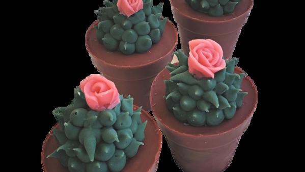 Succulent Soap Coral Rose | 4 oz or 4.5 oz