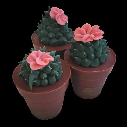Succulent Soap Coral Flower   4.5 oz