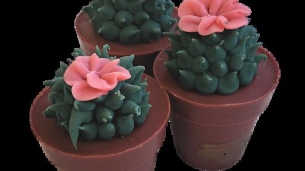 Succulent Soap Coral Flower | 4.5 oz