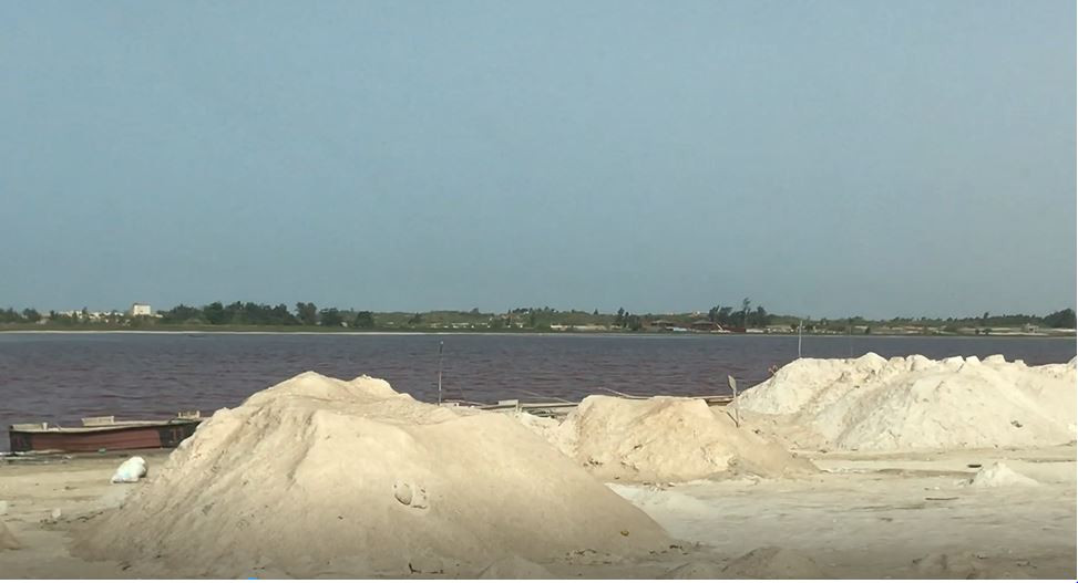 Piles of salt curing on the shoreside of the pink lake