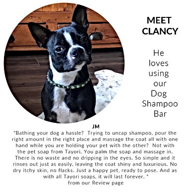 IG Meet Clancy.jpg