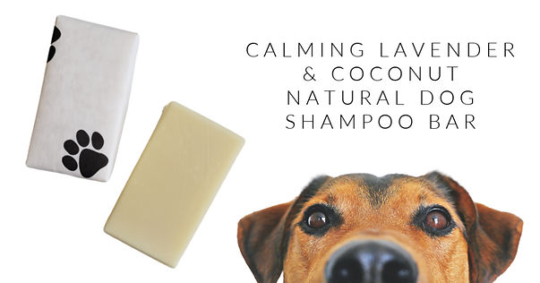 IG Landscape Dog Shampoo.jpg