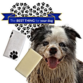 Best Thing for your Dog Soap