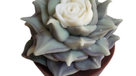 Succulent Soap White Rose | 6.0 oz