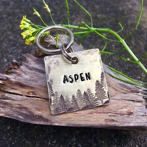 "Aspen Square Pet Tag in 1"" Brass"