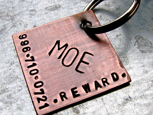 Square Pet ID Tag  in 1'' Brushed Copper