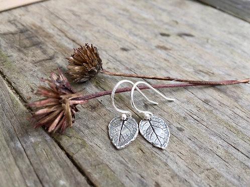 Dainty Leaf Earrings in Sterling Silver