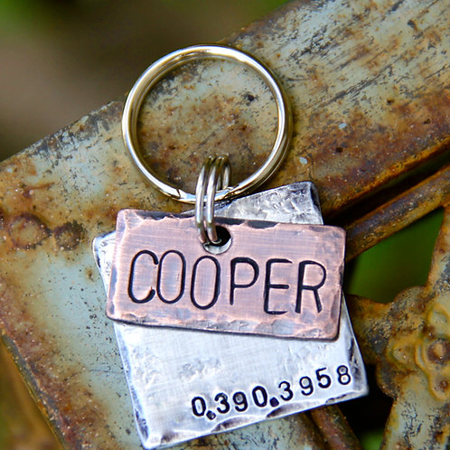 Cooper Pet ID Tag in Mixed Metal