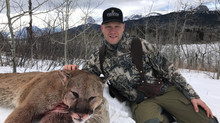 #10 SCI Record Book Mountain Lion!!!