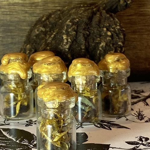 Conjure Jars