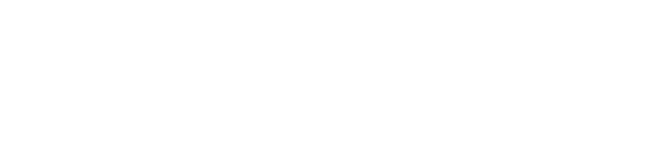 CHAPTER WORDMARK WL.png
