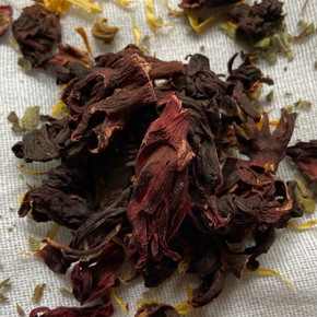 Notes about Hibiscus