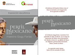 Perfil Mexicano