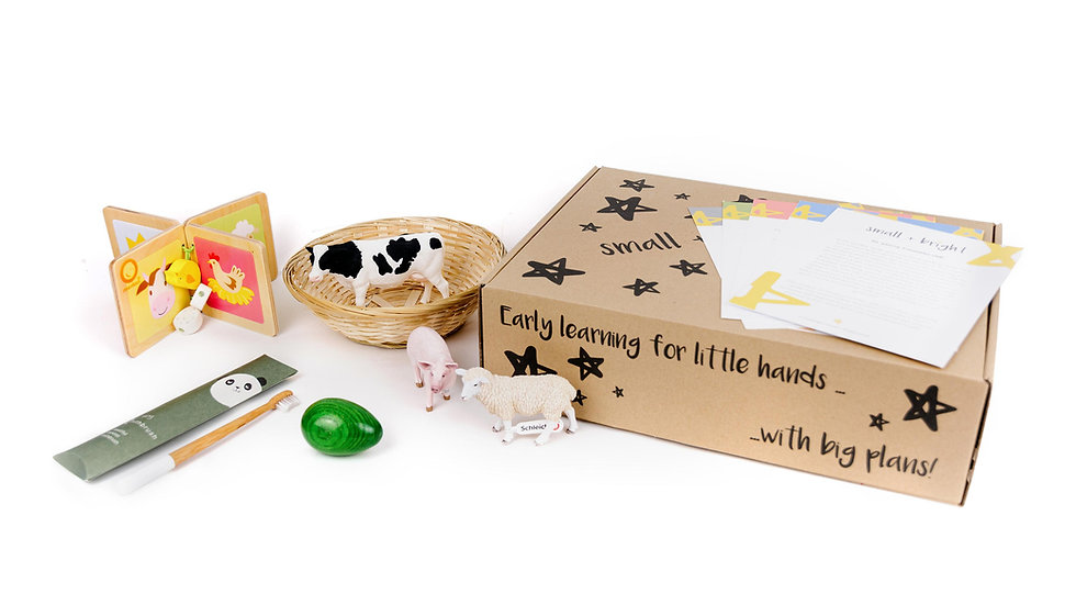 montessori toys for small bright learners