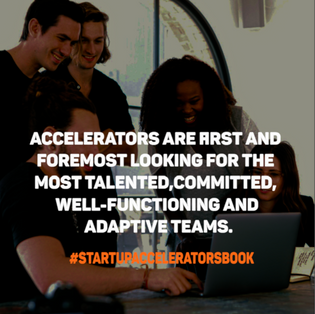 Startupacceleratorsbook11.png