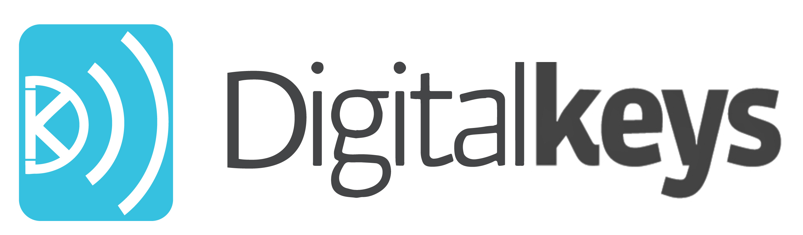Digital Keys Logo