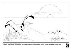 Albatross page.jpg