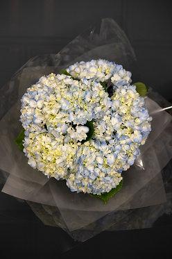 Bouquet N6