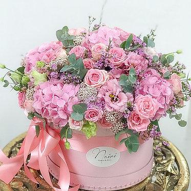 Flower-box/ Pink Cloud