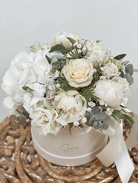 Flower-box / Creme Brulee