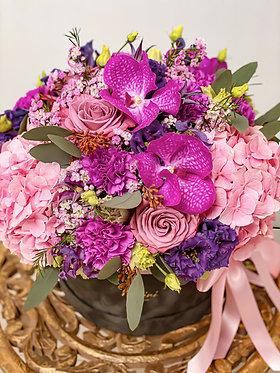 Flower-box / Brighten'up
