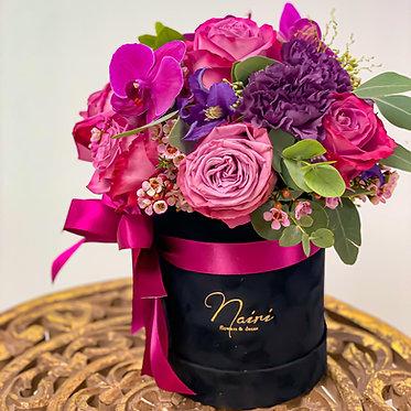 Flower-box / FUCHSIA