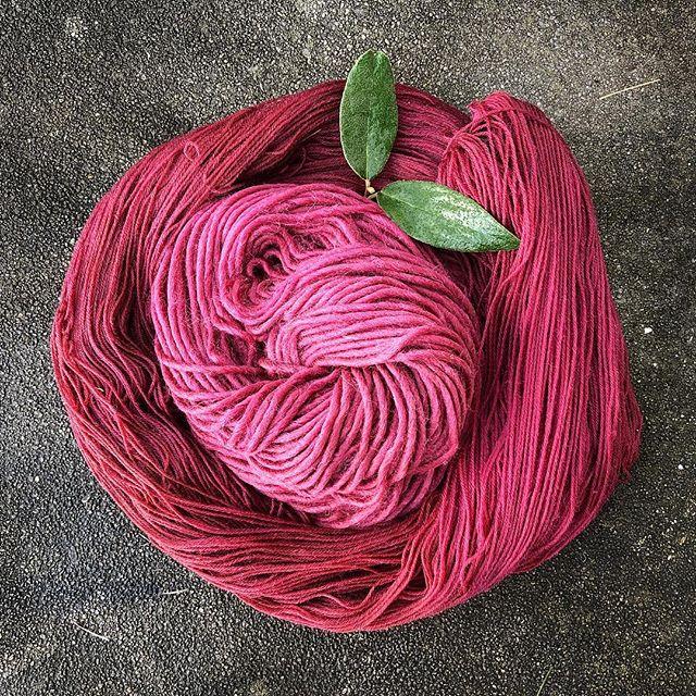 raspberry colored yarn