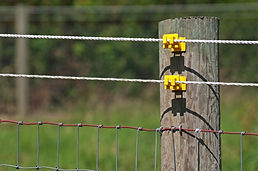Morgans Electric Fencing