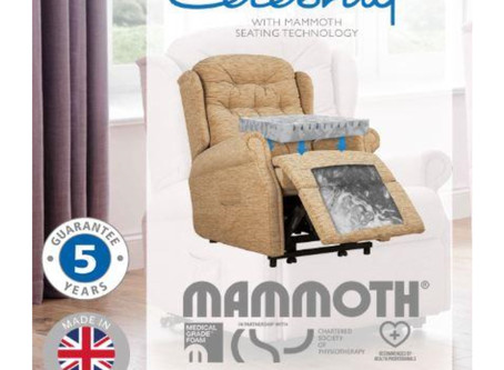 CELEBRITY MAMMOTH MEDICAL GRADE™ FOAM SEATING TECHNOLOGY