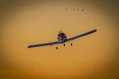 Bonita tarde de vuelo fotografiada por @