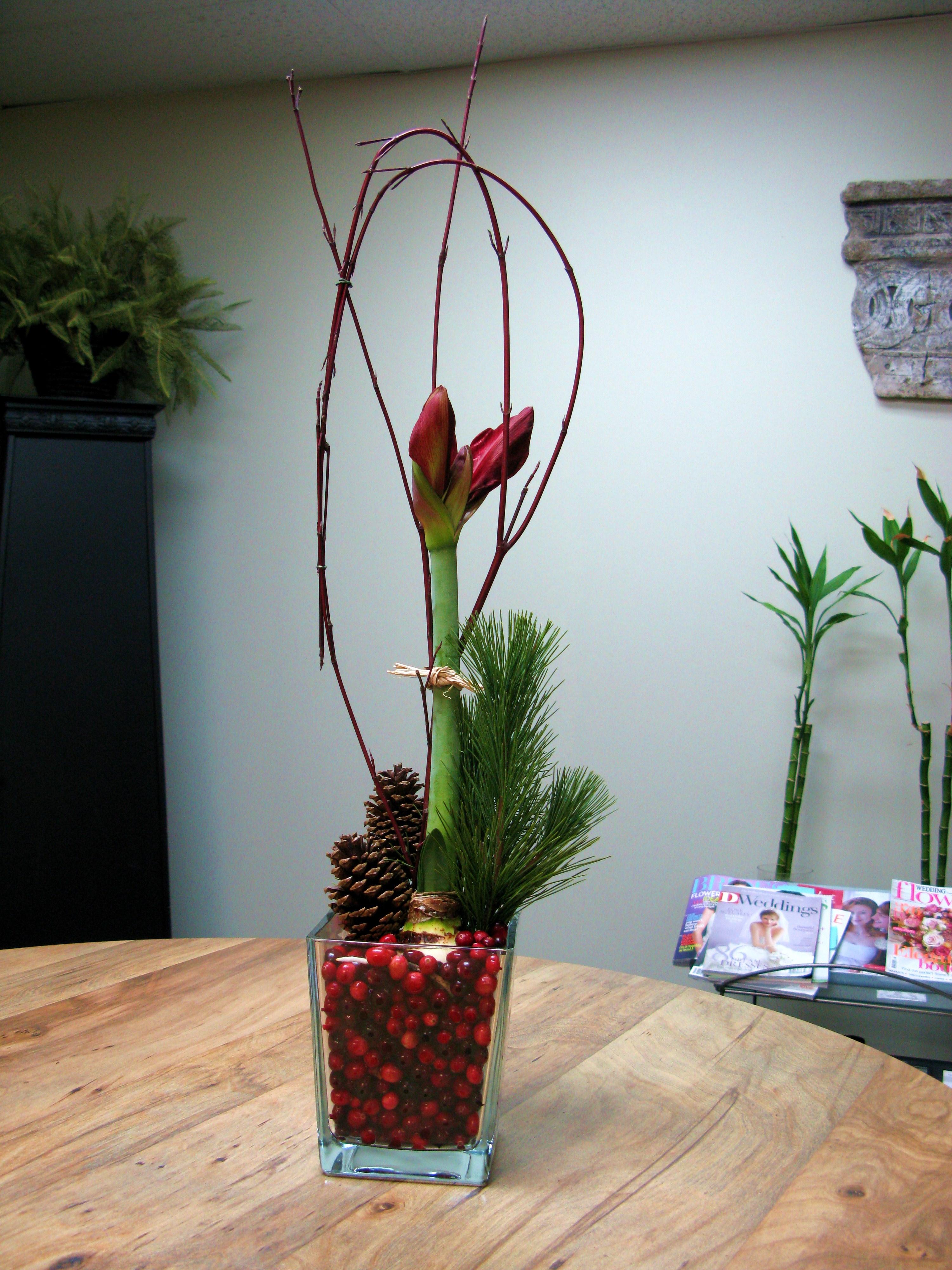 Holiday Gift 1