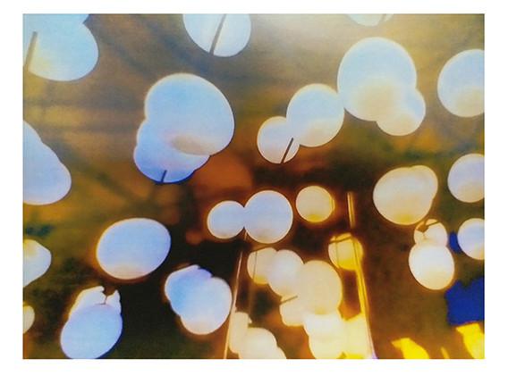multiplelights_singleshot_s.jpg