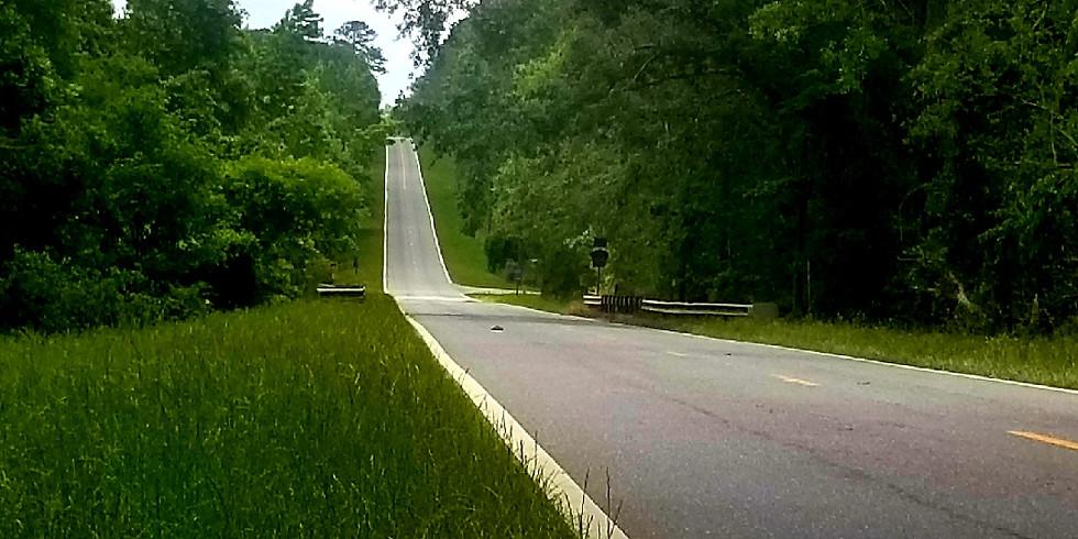 Florida Georgia Hills