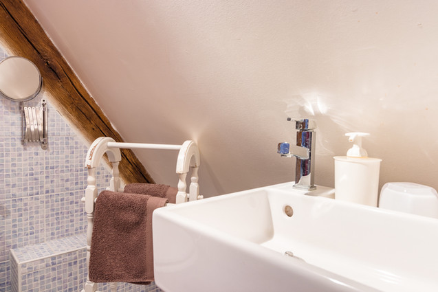 6 people apartment airbnb, hyper center of Amboise Loire Valley with view on the chateau castle, near Chenonceau and Chambord _bathroom2