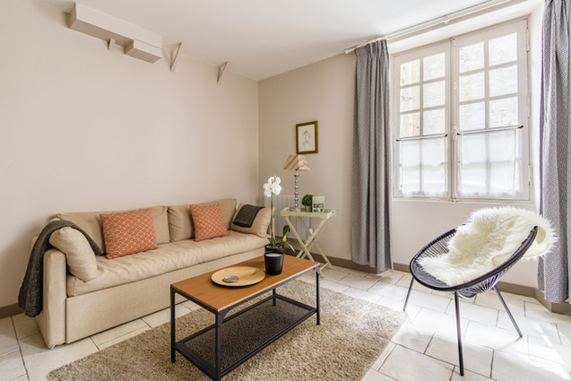 2 people apartment airbnb, hyper center of Amboise Loire Valley with view on the chateau castle, near Chenonceau and Chambord _living room 2