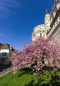 Amboise Villaconcorde prime loction13_1.