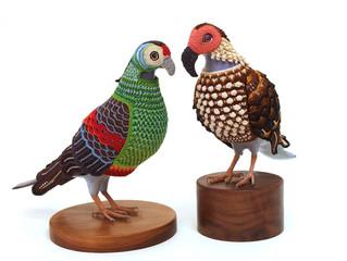 Artista autodidata tece plumagem de aves extintas em crochê