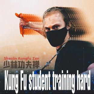 Kungfu Student Training Hard