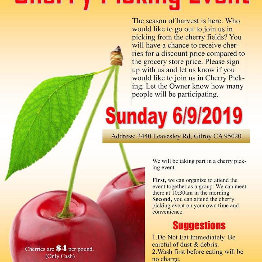 SKZ Field Trip cherry pickmg event.