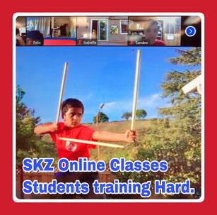 Online Classes Training Hard
