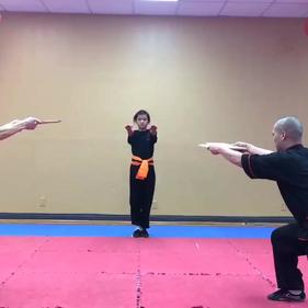 Fiora Flying kick