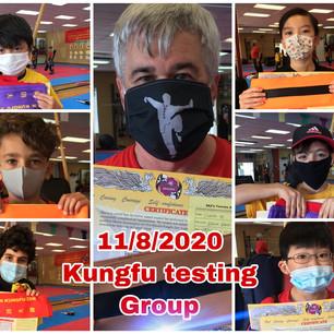 11/8/2020 SKZ Kungfu Testing Group