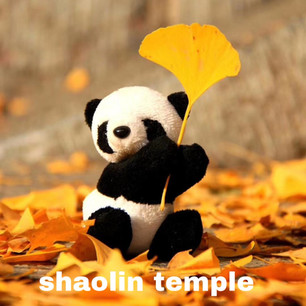 Shaolin Temple in Autumn