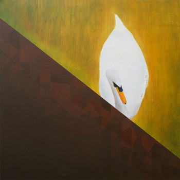 DEC- Swan at night